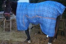 Fabric-Horse-Blanket
