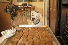 Flax-Seed-Dog-Biscuits1