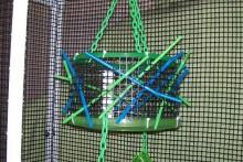 Frisbee-Sugar-Glider-Toy