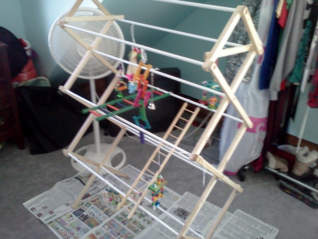 Laundry Rack Bird Jungle Gym