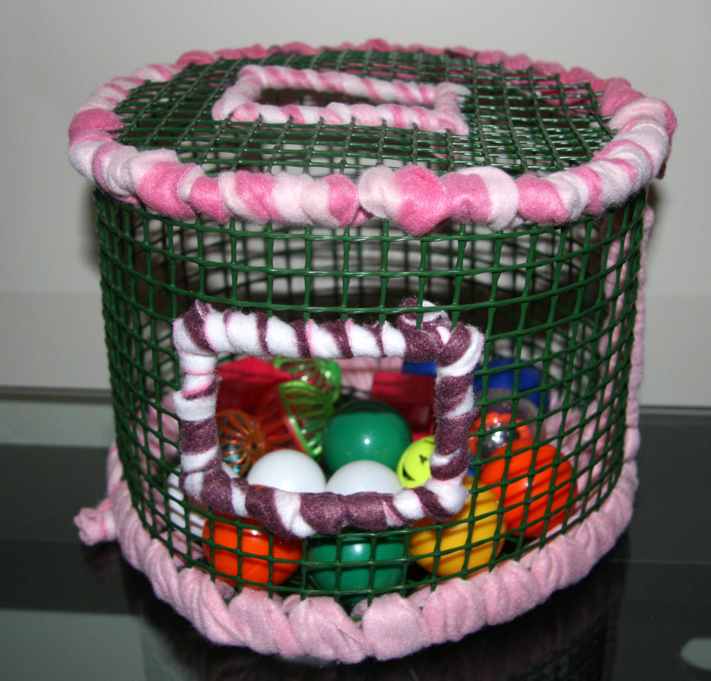 Toys For Sugar : Sugar glider toys safe for rats