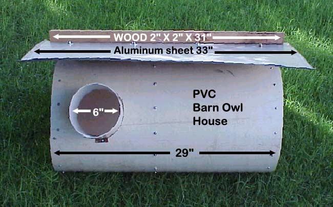Diy pvc bird house