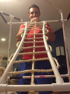 Pvc Bird Ladder Petdiys Com