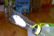 Plastic-Bottle-Hamster-Tunnels