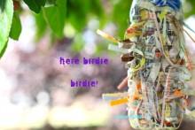 Plastic-Bottle-Nest-Material-Dispenser