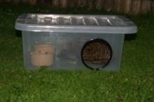 Plastic-Container-Hedgehog-Feeder