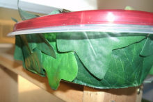 Plastic-Container-Humidity-Hide1