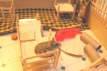 Popsicle-Stick-Hamster-Playpen1