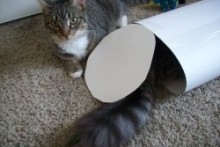 Posterboard-Play-Tunnel