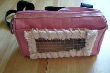 Purse-Travel-Pet-Carrier