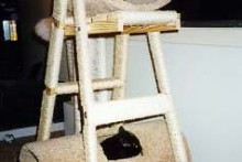 Step-Ladder-Cat-Tree