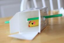 Straw-Box-Cat-Toy