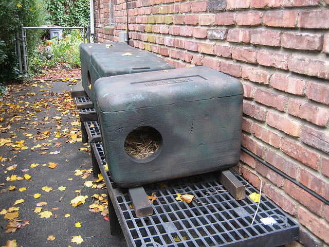 Cat House Made From A Cooler : Stryofoam box cat shelter petdiys