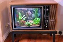 TV-Fish-Tank