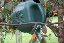 Watering-Can-Bird-Bath-Drip