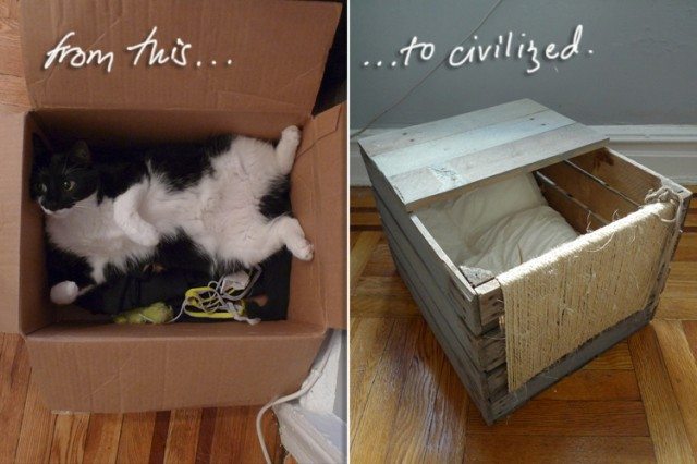 Wood Crate Cat Bed Petdiys Com