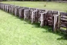Wood-Pallet-Farm-Fence
