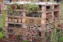 Wood-Pallet-Insect-Habitat