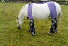 DIY Horse Allergy Trousers