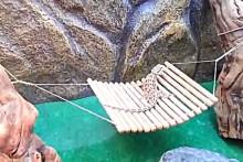 DIY-Lizard-Hammock-Swing