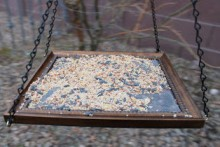 Picture-Frame-Bird-Feeder