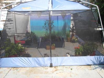 & Screen Tent Cat Enclosure - petdiys.com