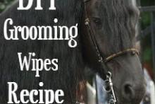 DIY-Horse-Grooming-Wipes