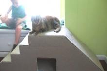 DIY-Stair-Ramp-Hide