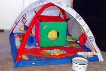 Infant-Gym-Ferret-Playground