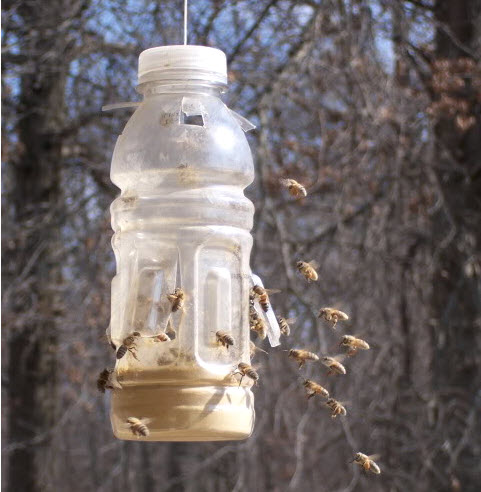 Plastic Bottle Bee Pollen Feeder Petdiys Com