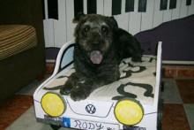 DIY-Car-Shaped-Dog-Bed
