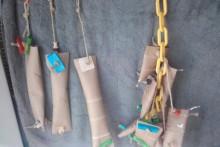DIY-Cardboard-Foraging-Tubes