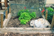 DIY-Rabbit-Garden-Enclosure