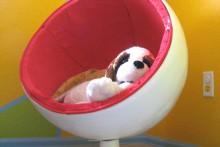 DIY-Dog-Ball-Chair