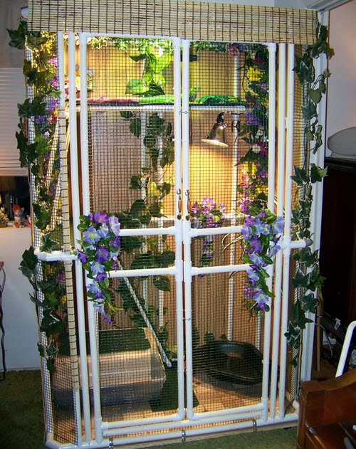 PVC Iguana Enclosure - petdiys com