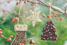 DIY-Feeder-Ornaments