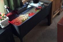 Planter-Box-Tortoise-Table