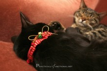 DIY-Cat-Holiday-Collar