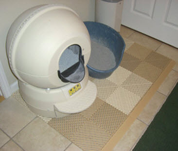 Cleaning Cat Litter From Tile