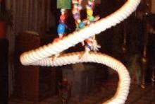 DIY-Spiral-Rope-Perch