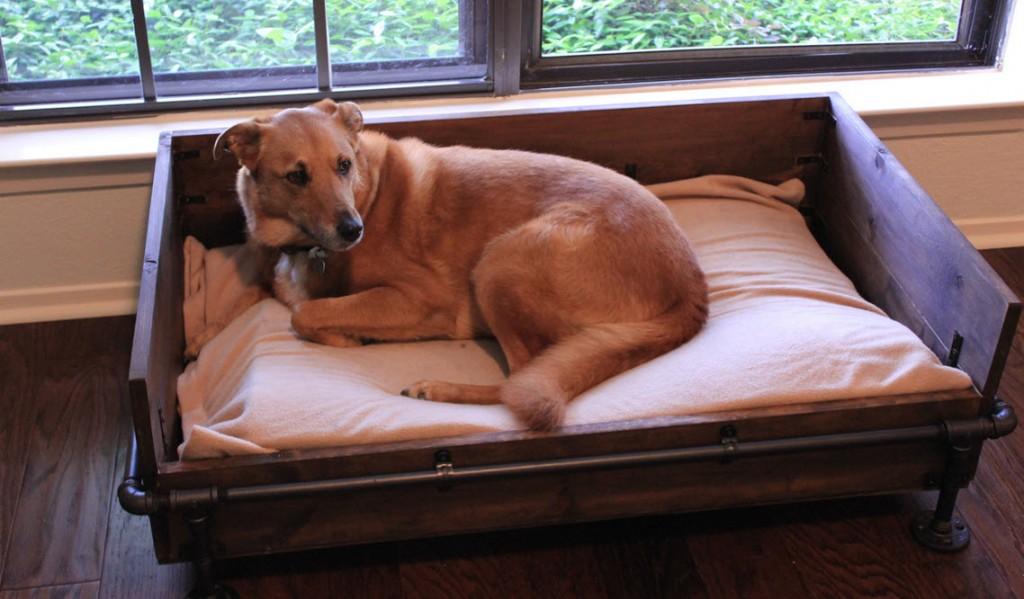 Making A Dog Bed For Large Dog