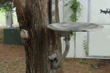 Satellite-Dish-Birdbath