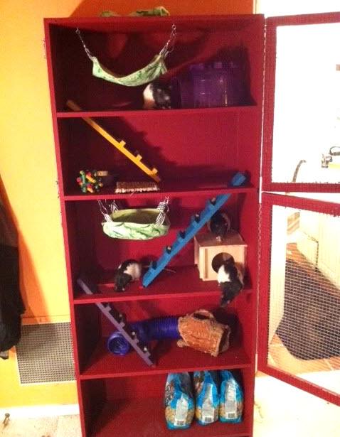 Bookcase Rat Cage