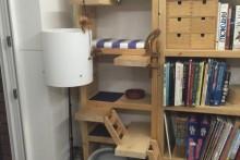 DIY-Ledge-Bookcase-Condo