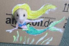 DIY-Hamster-Box-Photo-Cutout