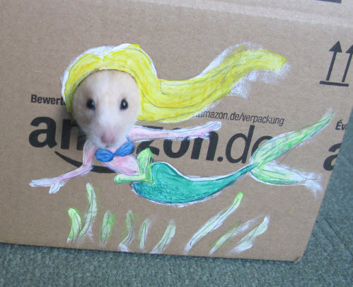 DIY Hamster Photo Cutout Box - petdiys com