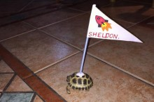 DIY-Turtle-Flag