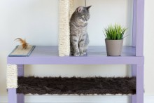 DIY-Stacked-Tables-Cat-Condo