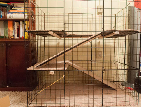 Rabbit Cage Design Building Multi Level All Wire