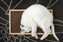 DIY-Wood-Floor-Scratcher